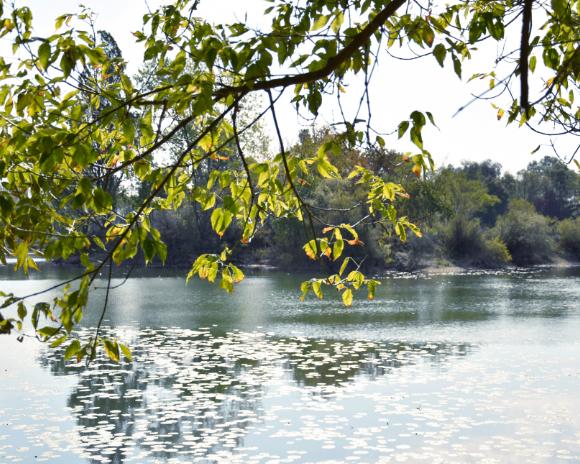 Lac de Fretterans en Saône-et-Loire