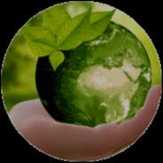 Ecologie - Nature
